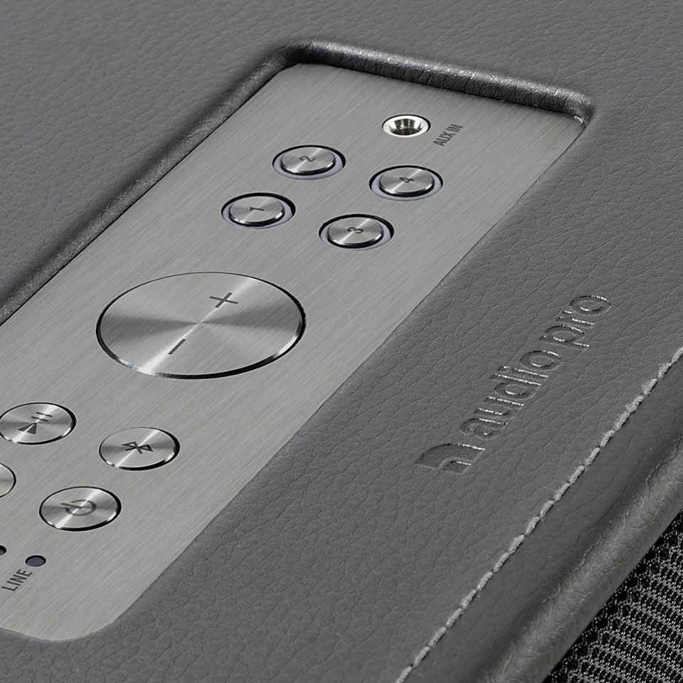 D1 Audio Pro