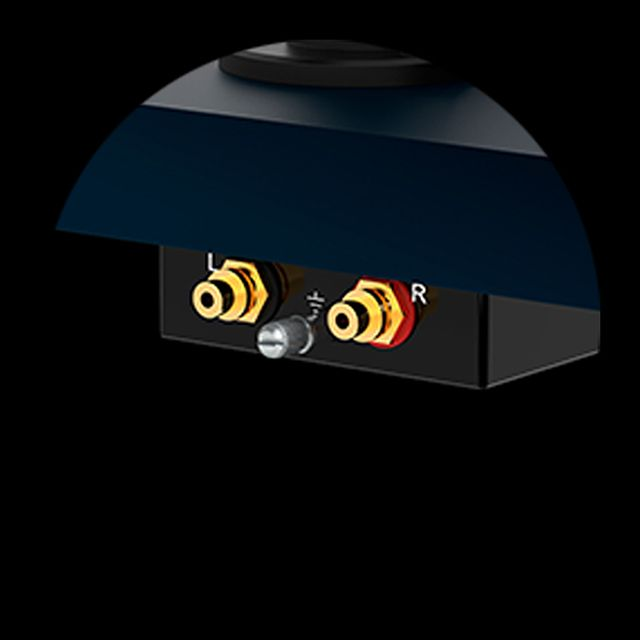 Debut Carbon EVO Project Audio Gold plated sockets